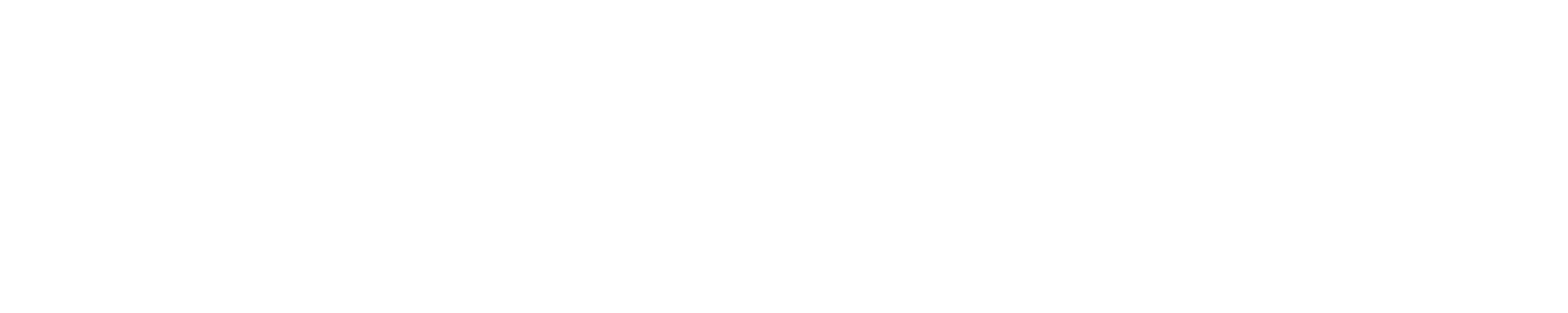 Video10x Logo White